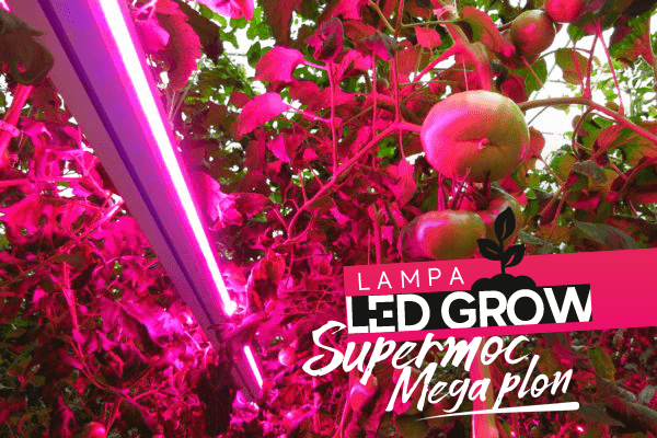Lampa LED Grow do wzrostu roślin Best AGR100